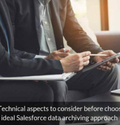 Top 8 Technical aspects to consider before choosing an ideal Salesforce data archiving approach