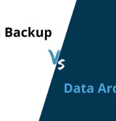 Data Backup or Data Archive: What your business needs?