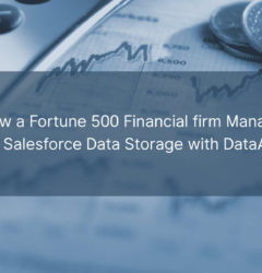 DataArchiva for Financial Industry: How a Fortune 500 Financial firm Managed their Salesforce Data Storage