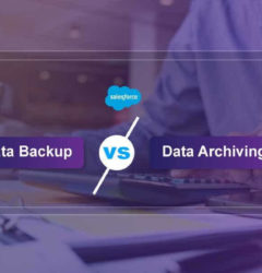 Salesforce Data Backup or Archiving – What a financial firm should opt for?