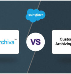 Why should you consider DataArchiva for Salesforce Data Archiving & not a Custom Solution?