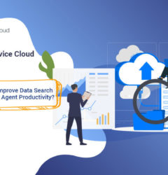 Salesforce Service Cloud Data Archive: How to Improve Data Search Quality & Agent Productivity?