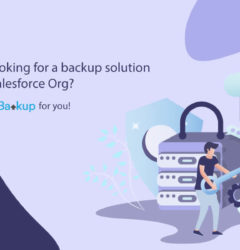 Are you looking for a backup solution for your Salesforce Org? Here is DataBakup for you!